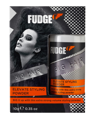 Fudge Elevate Styling Powder 10g