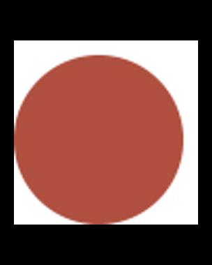 Sensai Rouge Intense Lasting Colour