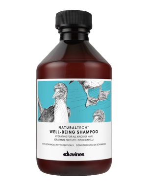 Davines NaturalTech Well Being Shampoo