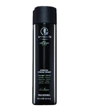 Paul Mitchell Awapuhi Wild Ginger Cream Rinse, 250ml
