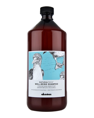 Davines NaturalTech Well Being Shampoo