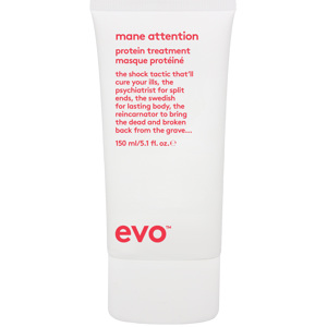 Mane Attention Protein Treatment, 150ml