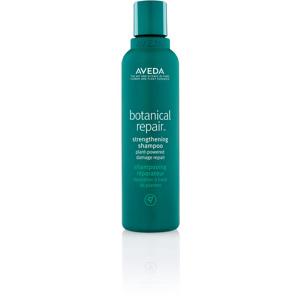 Botanical Repair Shampoo