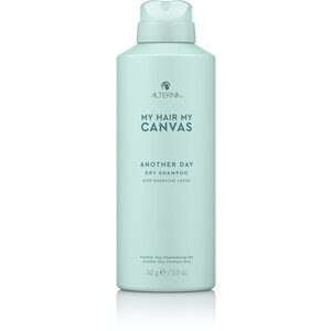 My Hair My Canvas Another Day Dry Shampoo, 142g