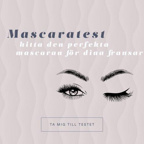/mascara-guide
